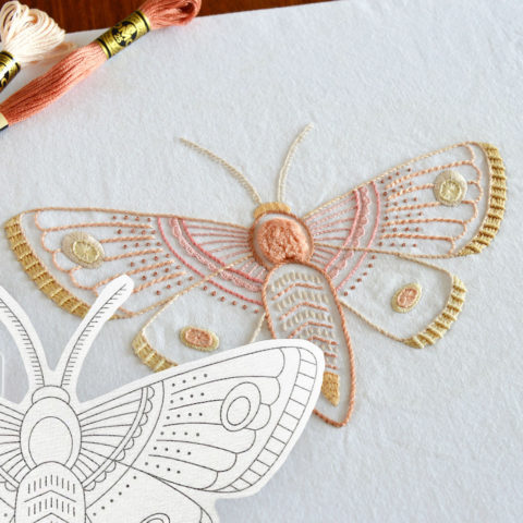 Anatomical Moth embroidery printed pattern by Kelly Fletcher